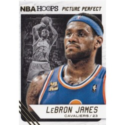 LEBRON JAMES 2014-15 PANINI NBA HOOPS PICTURE PERFECT