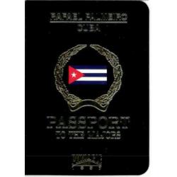 RAFAEL PALMEIRO 1997 PINNACLE PASSPORT TO THE MAJORS
